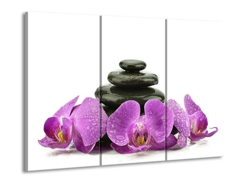 Glas schilderij Orchidee | Paars, Zwart, Wit | 90x60cm 3Luik