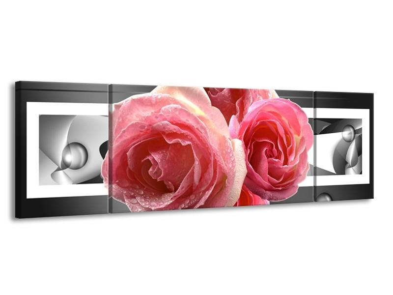 Canvas schilderij Roos | Roze, Grijs | 170x50cm 3Luik
