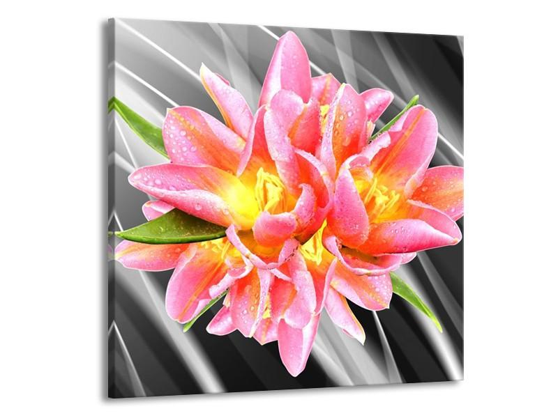 Glas schilderij Modern | Roze, Grijs, Geel | 70x70cm 1Luik