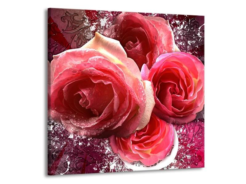 Canvas schilderij Roos   Roze, Paars, Wit   70x70cm 1Luik