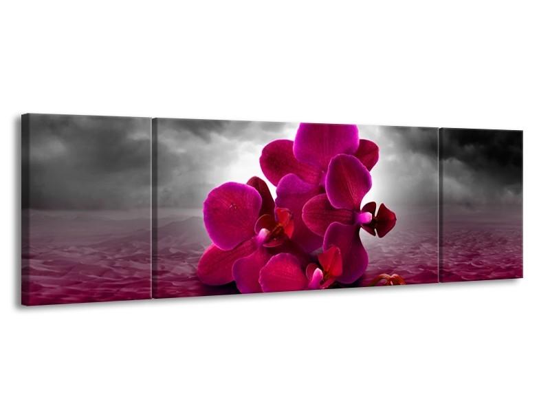 Canvas schilderij Orchidee | Rood, Grijs, Paars | 170x50cm 3Luik