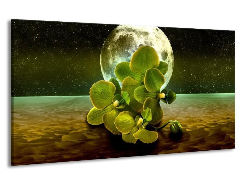Canvas schilderij Orchidee | Groen, Goud, Bruin | 190x100cm 1Luik