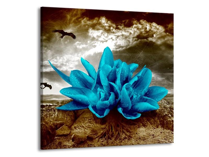 Canvas schilderij Lelie   Blauw, Grijs   70x70cm 1Luik