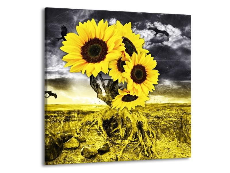 Canvas schilderij Zonnebloem   Geel, Grijs   70x70cm 1Luik