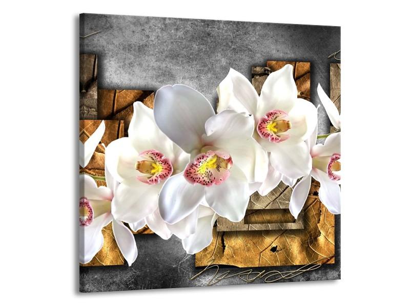 Canvas schilderij Orchidee   Grijs, Bruin, Wit   70x70cm 1Luik