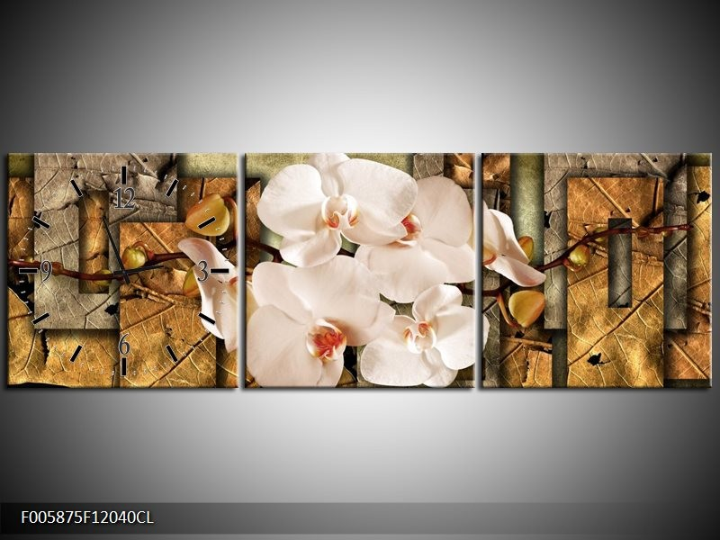 Klok schilderij Orchidee   Bruin, Crème   120x40cm 3Luik