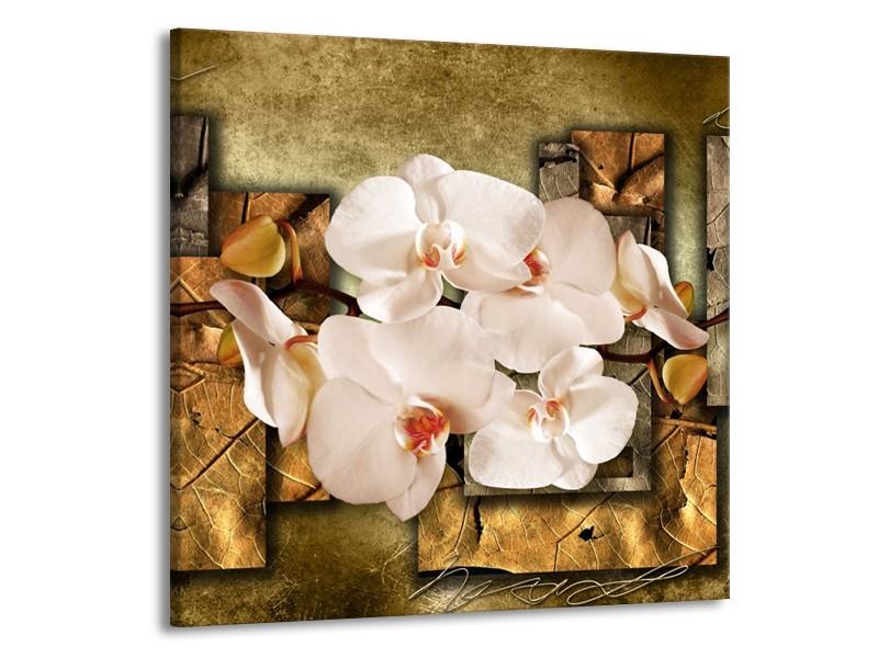 Canvas schilderij Orchidee   Bruin, Crème   70x70cm 1Luik