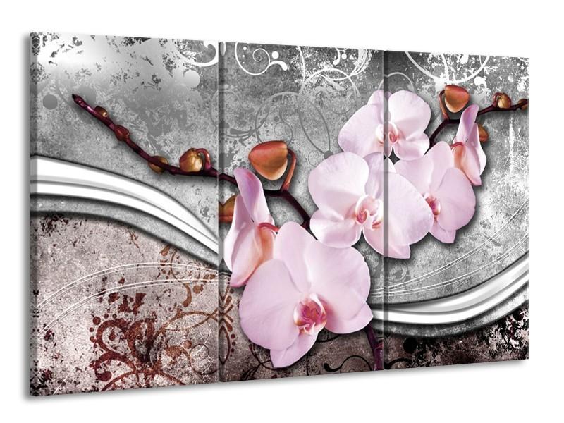 Canvas schilderij Orchidee   Roze, Grijs   165x100cm 3Luik
