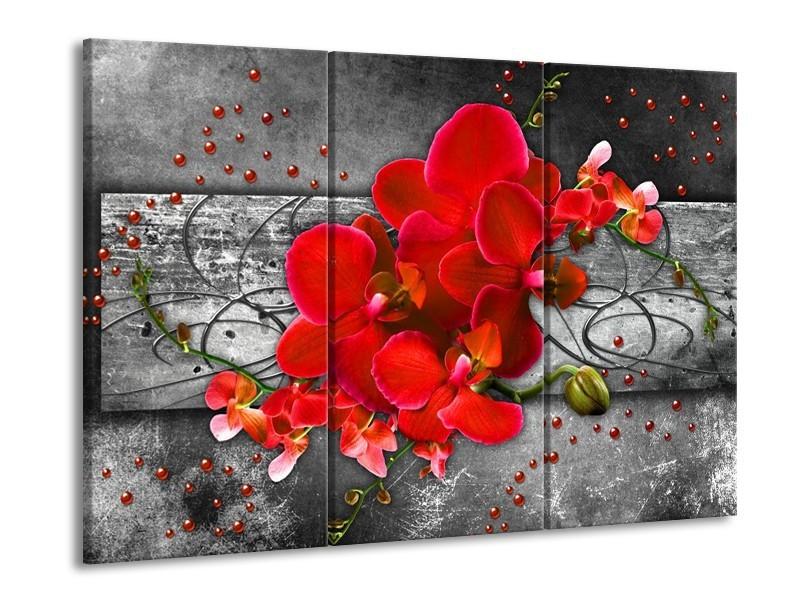 Glas schilderij Orchidee | Rood, Grijs | 90x60cm 3Luik