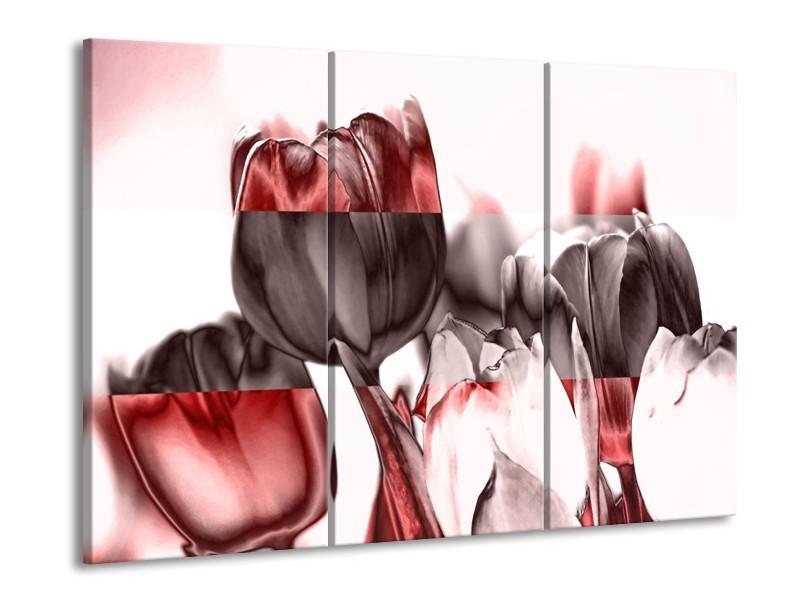 Glas schilderij Tulp | Rood, Wit, Bruin | 90x60cm 3Luik