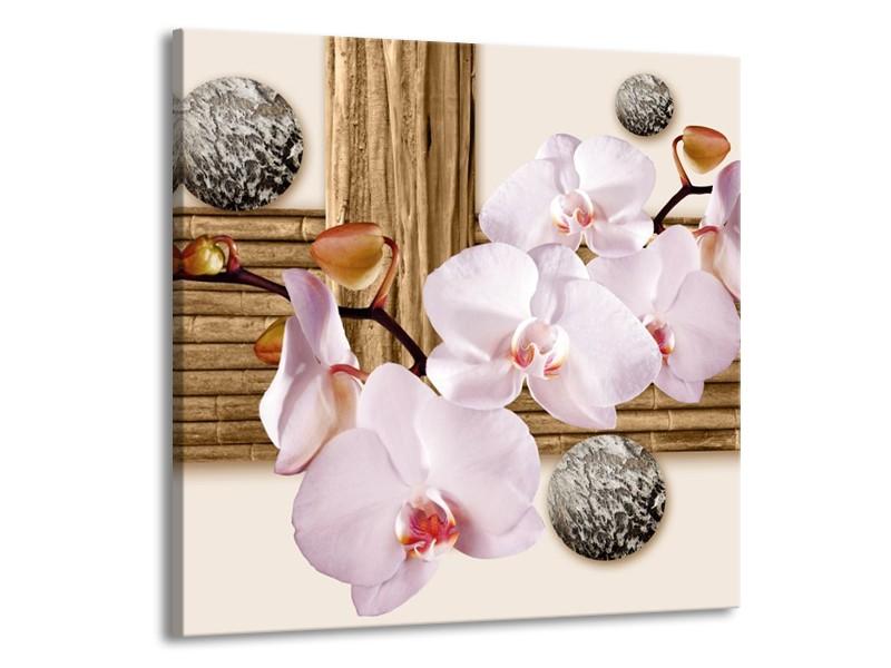 Canvas schilderij Orchidee   Roze, Grijs, Bruin   70x70cm 1Luik