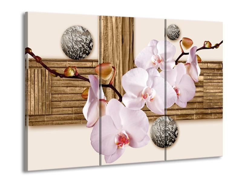 Canvas schilderij Orchidee | Roze, Grijs, Bruin | 90x60cm 3Luik