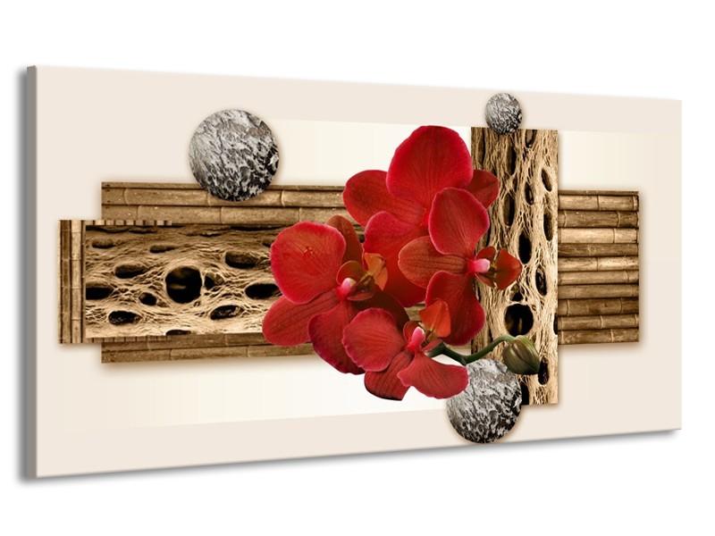 Canvas schilderij Orchidee | Rood, Bruin, Wit | 170x90cm 1Luik