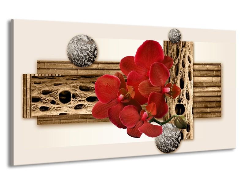 Canvas schilderij Orchidee | Rood, Bruin, Wit | 190x100cm 1Luik