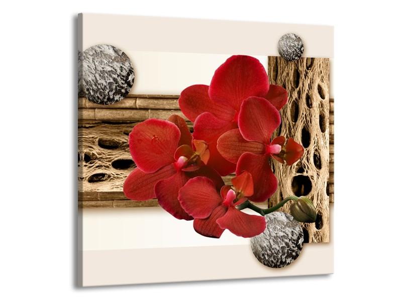 Canvas schilderij Orchidee   Rood, Bruin, Wit   70x70cm 1Luik