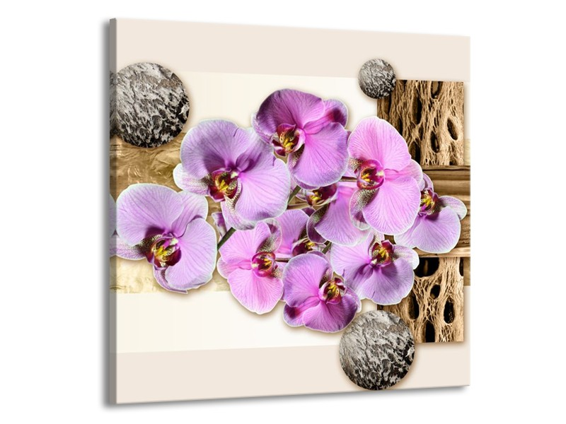 Canvas schilderij Orchidee   Roze, Wit, Bruin   70x70cm 1Luik