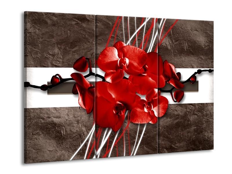 Glas schilderij Orchidee | Rood, Bruin, Wit | 90x60cm 3Luik