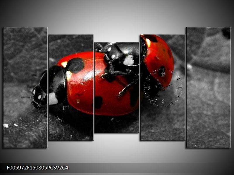 Klok schilderij Lieveheersbeestje   Rood, Zwart, Grijs   150x80cm 5Luik