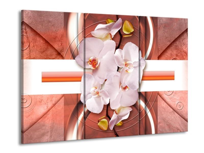 Glas schilderij Orchidee | Wit, Rood | 90x60cm 3Luik