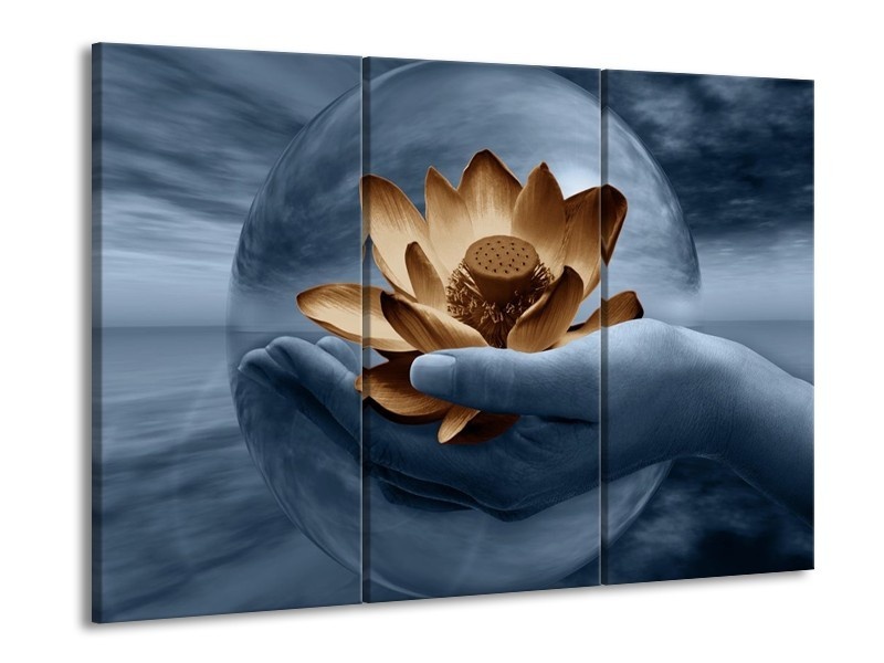 Glas schilderij Bloem | Grijs, Blauw, Bruin | 90x60cm 3Luik