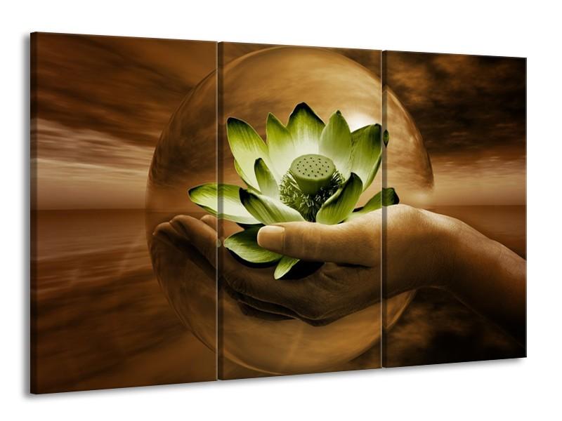 Glas schilderij Bloem | Groen, Bruin | 165x100cm 3Luik