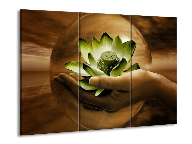 Glas schilderij Bloem | Groen, Bruin | 90x60cm 3Luik