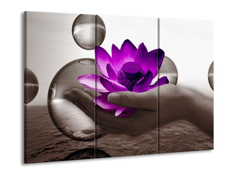 Glas schilderij Bloem | Paars, Grijs | 90x60cm 3Luik