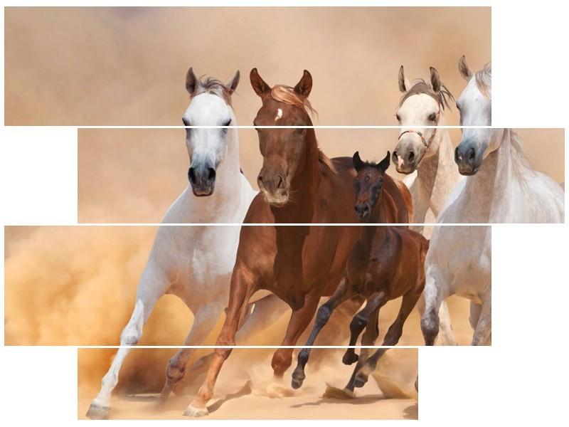 Canvas schilderij Paard | Bruin, Wit, Crème | 115x85cm 4Luik