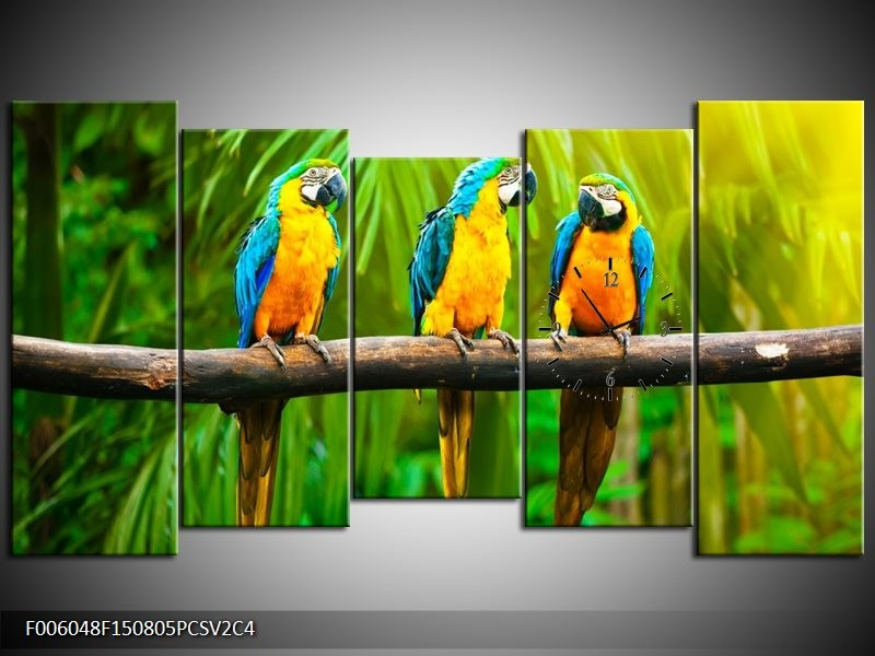 Klok schilderij Vogels | Groen, Oranje, Blauw | 150x80cm 5Luik