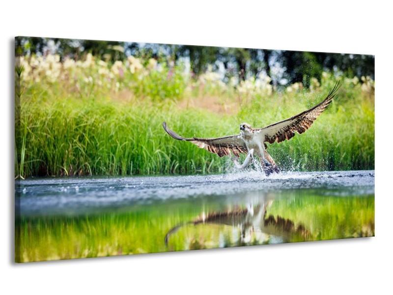 Canvas schilderij Natuur   Groen, Grijs   170x90cm 1Luik