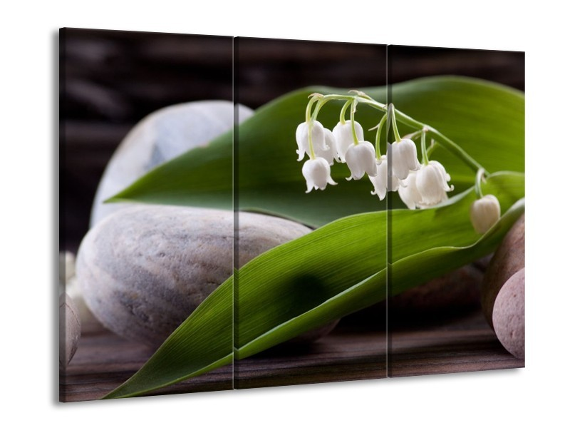 Glas schilderij Bloemen | Groen, Wit, Grijs | 90x60cm 3Luik