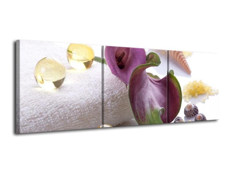 Glas schilderij Spa | Paars, Wit | 120x40cm 3Luik