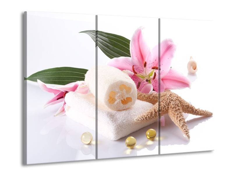Glas schilderij Spa | Roze, Wit | 90x60cm 3Luik