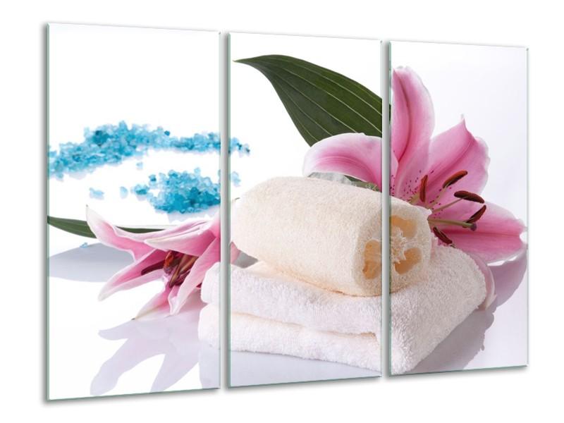 Glas schilderij Spa | Roze, Wit, Blauw | 120x80cm 3Luik