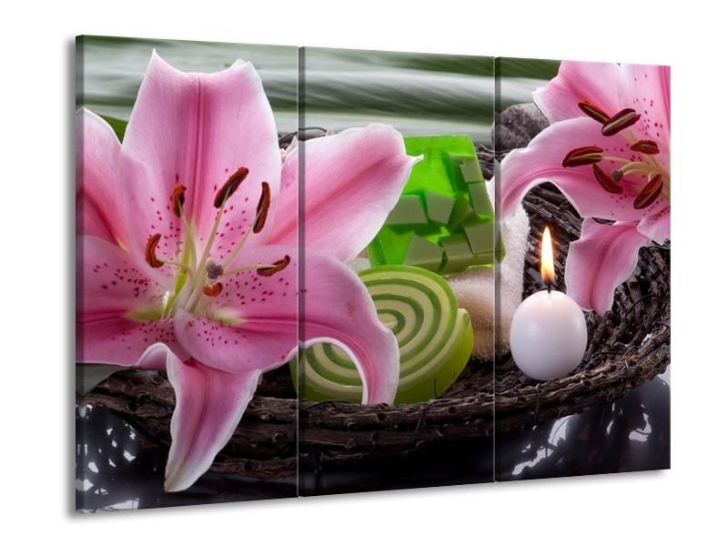 Glas schilderij Spa | Roze, Groen | 90x60cm 3Luik