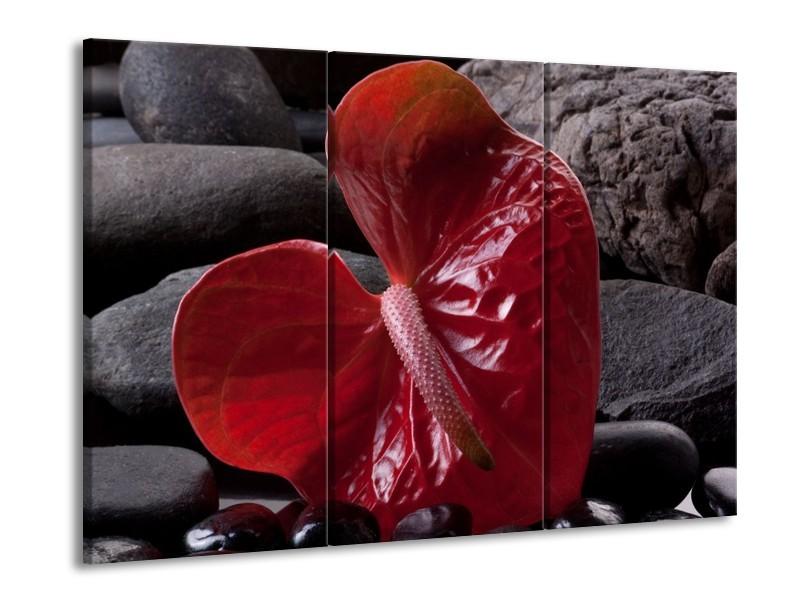 Glas schilderij Spa | Rood, Grijs, Zwart | 90x60cm 3Luik
