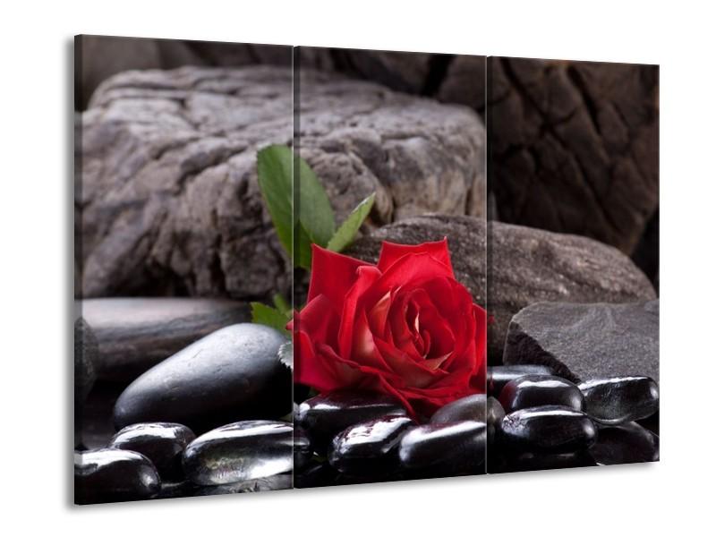 Glas schilderij Roos | Rood, Zwart | 90x60cm 3Luik