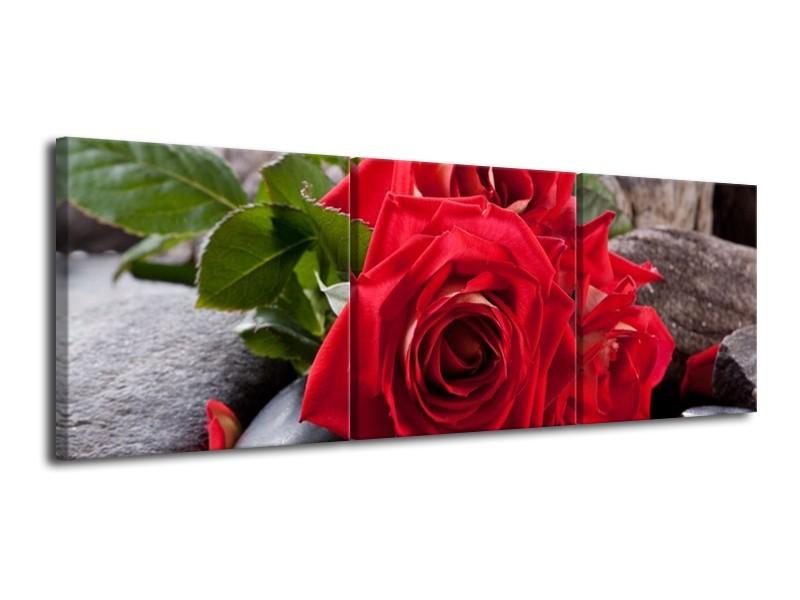 Glas schilderij Roos | Rood, Zwart, Groen | 120x40cm 3Luik