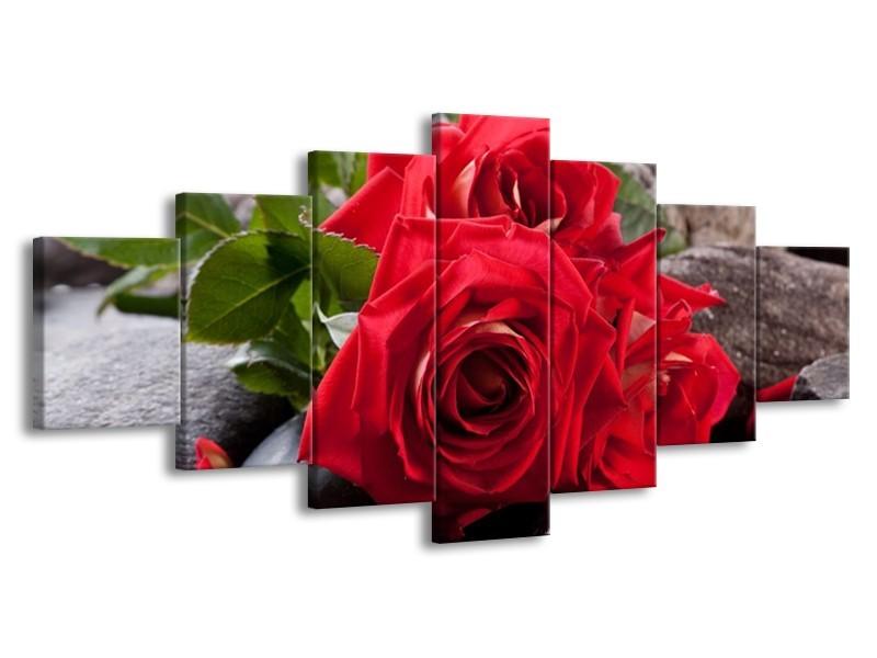 Glas schilderij Roos | Rood, Zwart, Groen | 210x100cm 7Luik