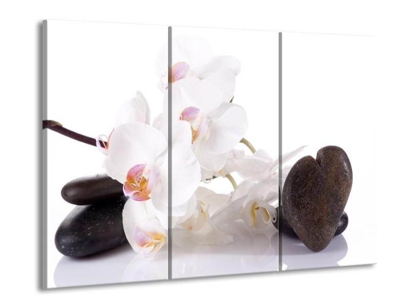 Glas schilderij Orchidee   Wit, Zwart   90x60cm 3Luik
