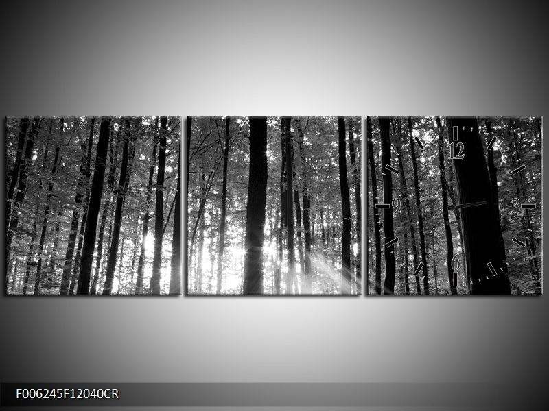 Klok schilderij Natuur | Grijs, Zwart, Wit | 120x40cm 3Luik