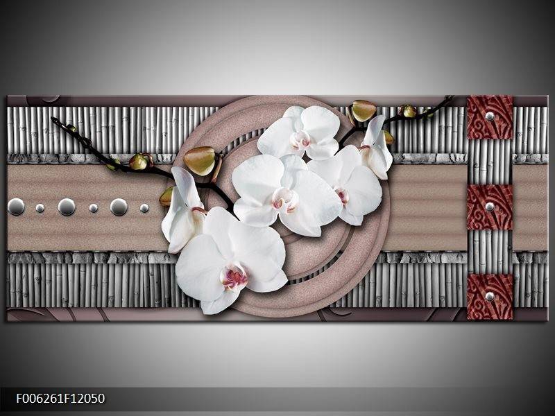 Canvas schilderij Orchidee | Bruin, Wit, Grijs | 120x50cm 1Luik