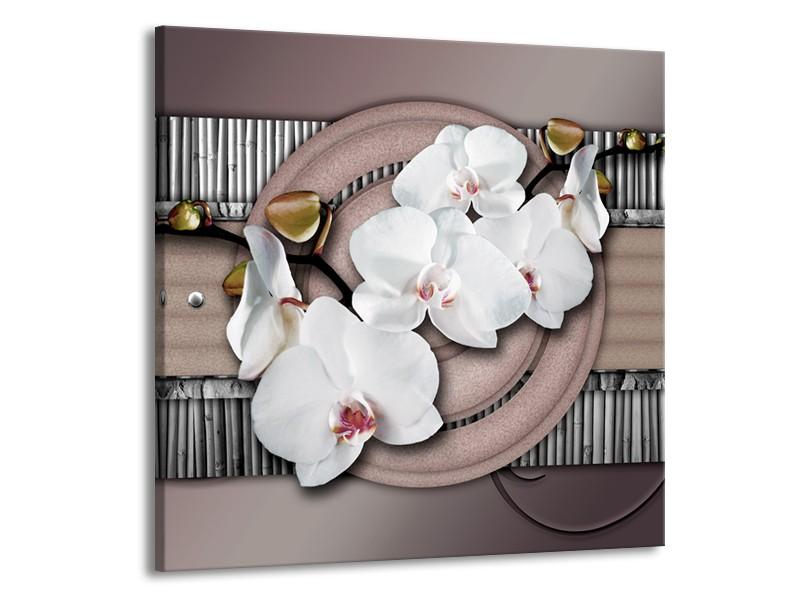 Glas schilderij Orchidee | Bruin, Wit, Grijs | 50x50cm 1Luik
