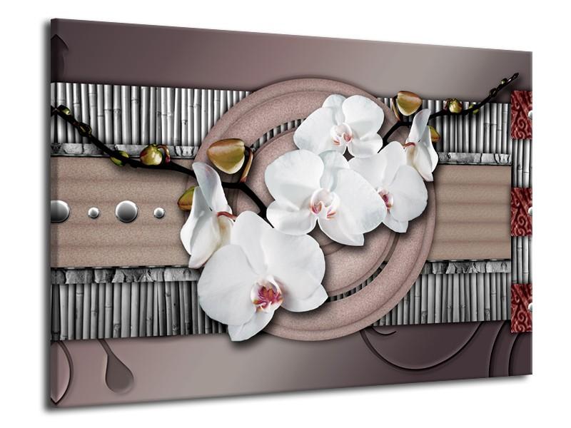 Glas schilderij Orchidee | Bruin, Wit, Grijs | 70x50cm 1Luik