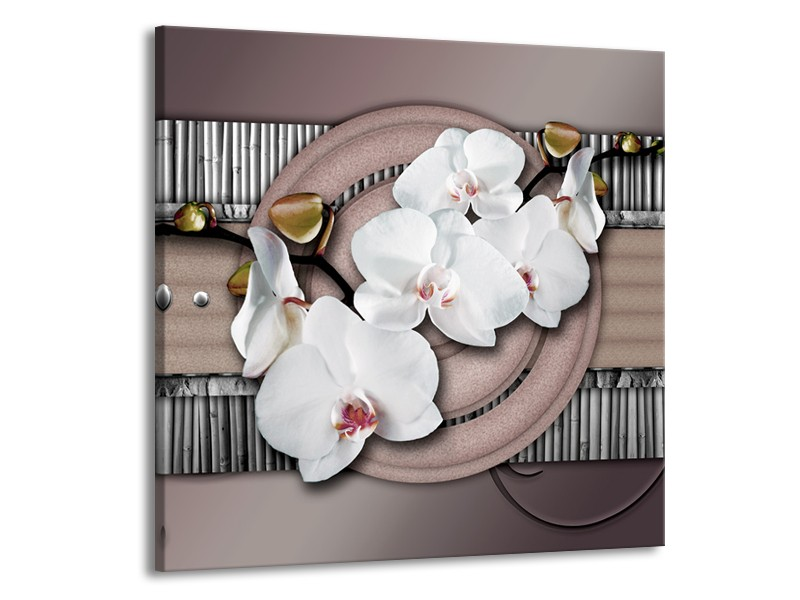 Glas schilderij Orchidee | Bruin, Wit, Grijs | 70x70cm 1Luik