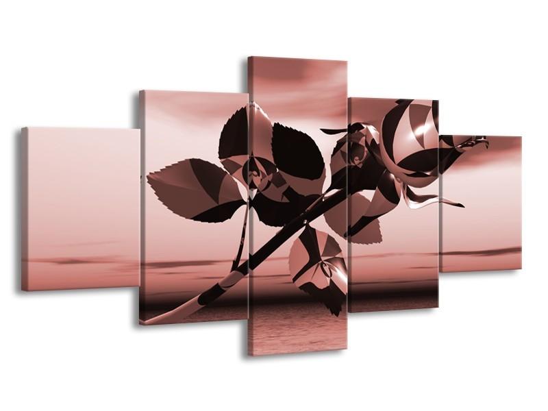 Glasschilderij Bloem, Roos   Bruin, Rood   150x80cm 5Luik