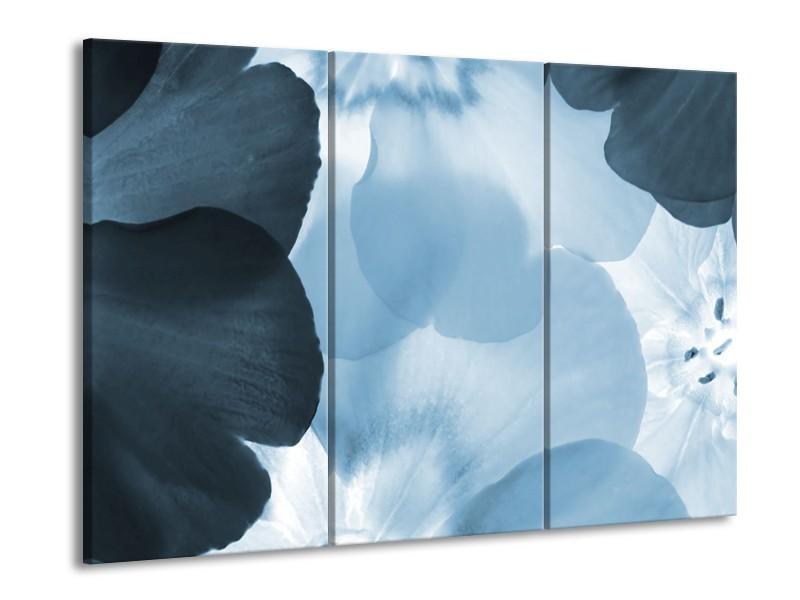 Canvas Schilderij Bloem   Blauw   60x90cm 3Luik
