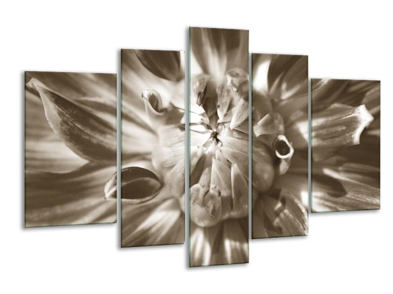 Glasschilderij Bloem | Sepia | 170x100cm 5Luik