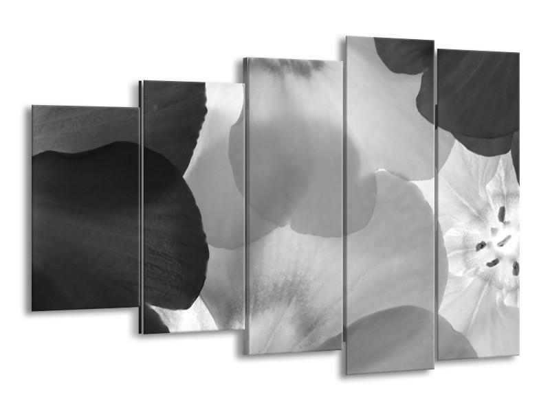 Glasschilderij Bloem   Zwart, Grijs   150x100cm 5Luik