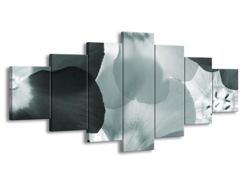 Glasschilderij Bloem | Grijs, Groen | 210x100cm 7Luik
